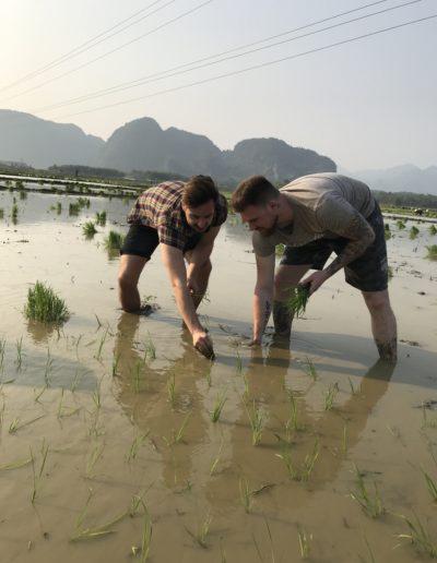 UniTrips-Inspiratiereizen-Zuidoost-Azië 40