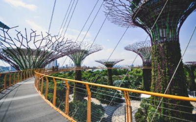 Zo word je helemaal verliefd op Singapore