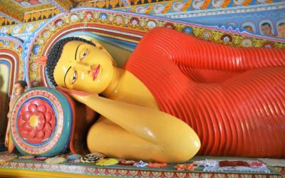 Wat je absoluut niet mag missen in Sri Lanka