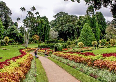 UniTrips - Sri Lanka - Kandy 1