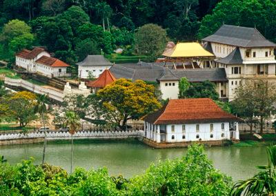 UniTrips - Sri Lanka - Kandy 2