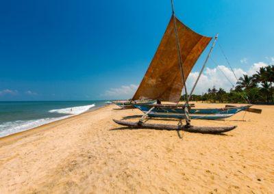 UniTrips - Sri Lanka - Negombo