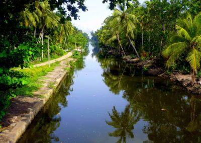 UniTrips - Sri Lanka - Negombo Muthurajawela 1