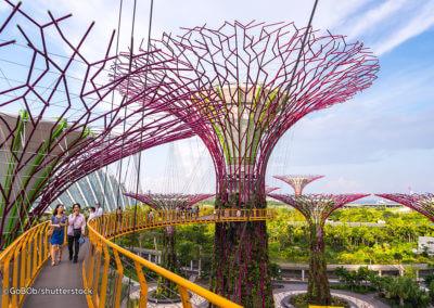 UniTrips - prospectie blog singapore gardens by the bay