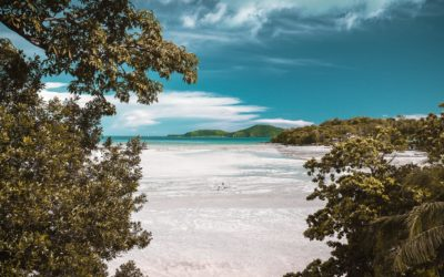 Zonnekloppers opgelet! Dit zijn de mooiste stranden in Azië